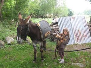 L'âne, mode d'emploi elma-et-bât-300x225